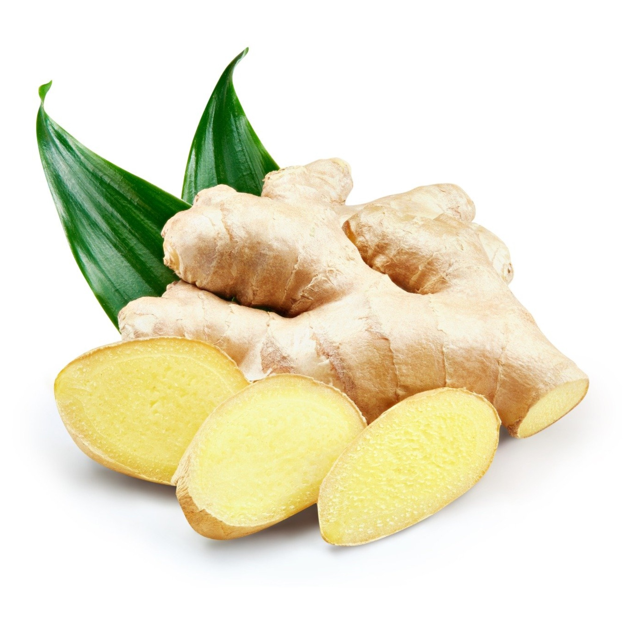 Ginger (Zingiber officinale)Image