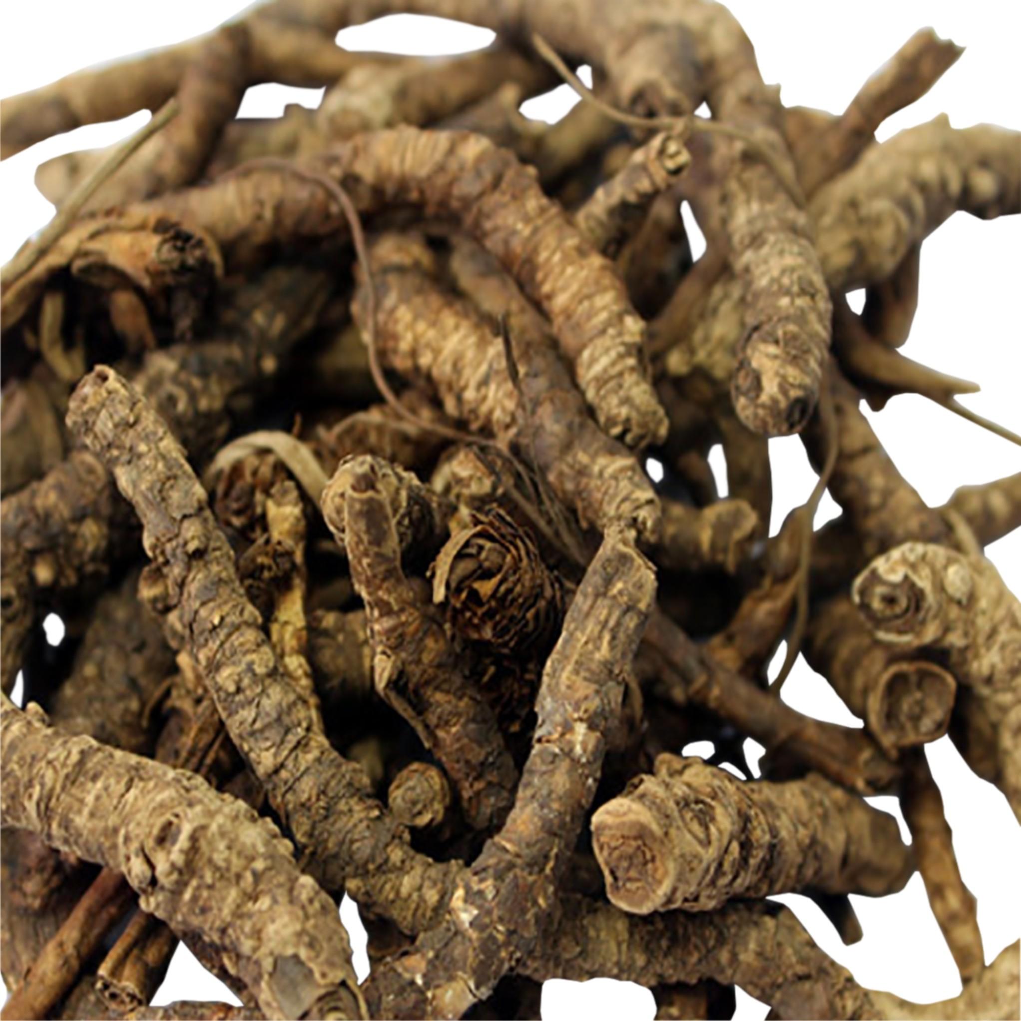 Kutki (Picrorhiza Kurroa) Image